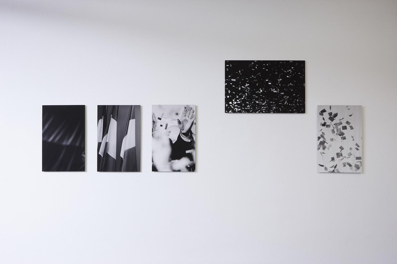 Kunst und Nation (Gruppenausstellung), Kunstraum Lakeside, 2016 | Photo: Johannes Puch