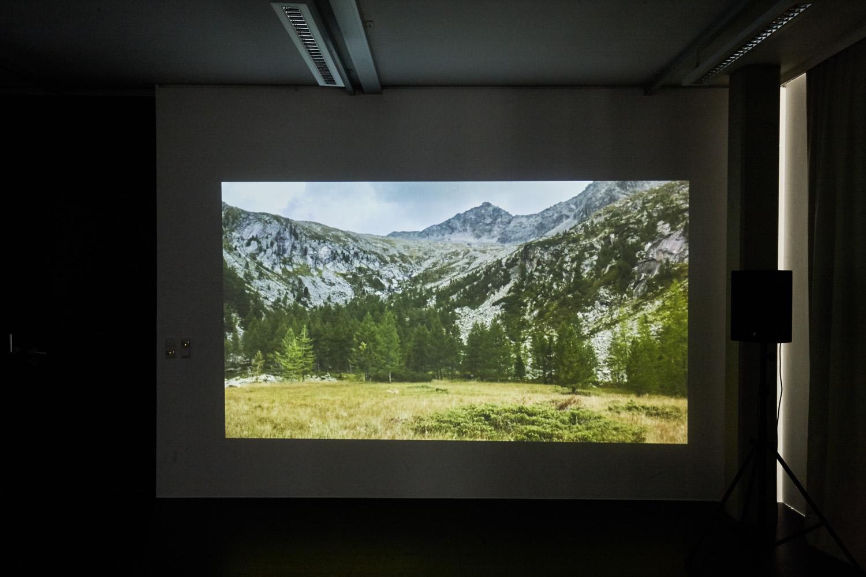 Sandra Man + Moritz Majce — Choros III (Koroška), Kunstraum Lakeside, 2017 | Foto: Johannes Puch